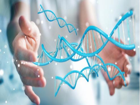 什么是DNA亲子鉴定测试?DNA亲子鉴定有多准确?
